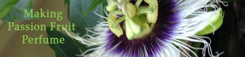 Passion Fruit Natural Perfume. What it Takes to Make